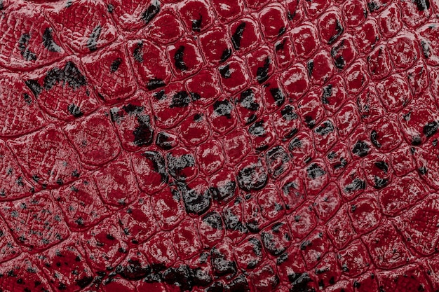 Czerwony rzemienny tekstury tło