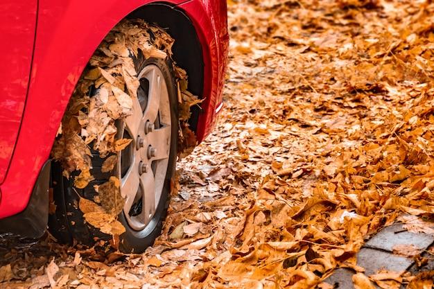 Czerwony samochodowy koło w jesień liściach