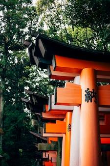 Czerwony torii japonia