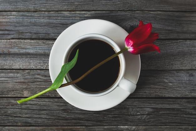 Czerwony tulipan kwiat na filiżance kawy, koncepcja miłości do kawy, romantyczna marzycielska martwa natura