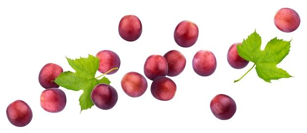 Czerwony winogrono odizolowywający na białym tle