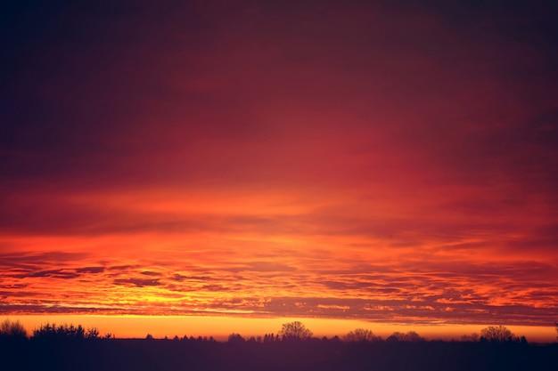 Czerwony zachód słońca chmury nad drzewami.