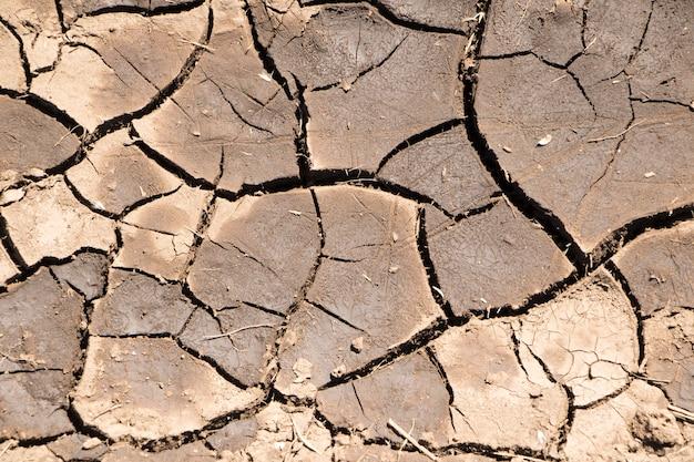 Część ogromnego obszaru wyschniętej ziemi dotkniętej suszą - w pęknięciach