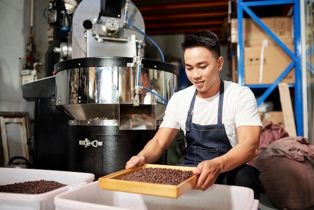 Człowiek przetwarza ziarna kawy