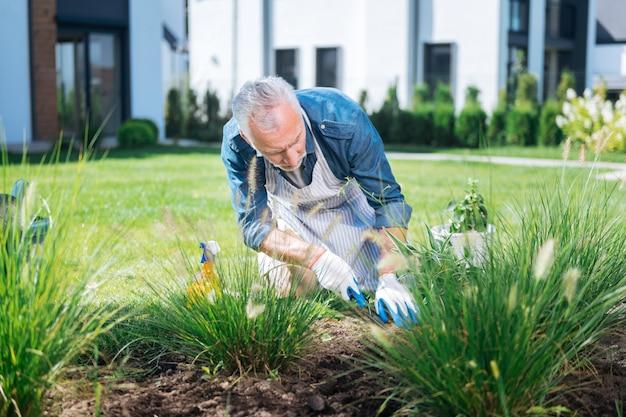 Człowiek z motyką. brodaty mężczyzna w białych rękawiczkach używa małej motyki podczas karczowania chwastów
