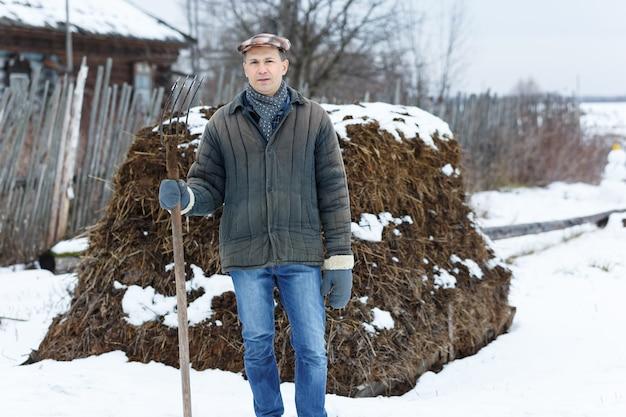 Człowiek z widelcem w sterty obornika w zimie