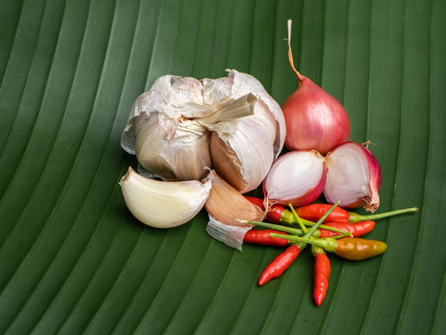 Czosnek, chili i szalotka to zioła o dużej wartości odżywczej
