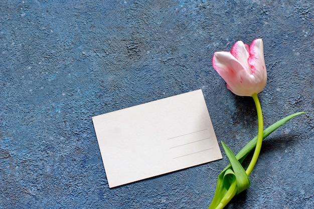 Czuły wiosenny tulipan i kartka pocztowa na szarym betonie