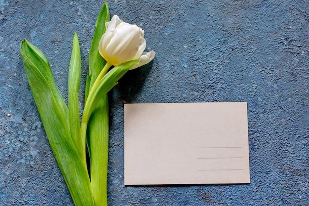 Czuły wiosna tulipan i pocztówka na popielatym cementowym tle