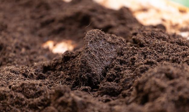 Czysta gleba doniczkowa do uprawy.