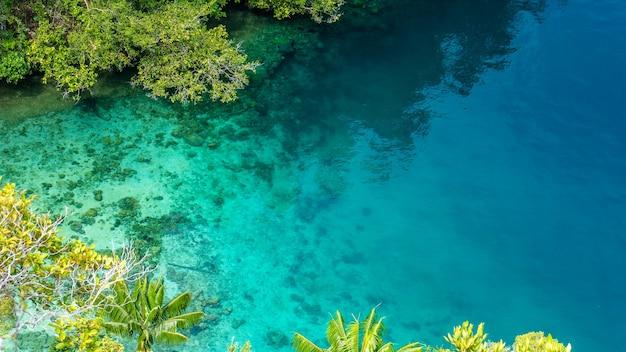 Czysta niebieska woda i koral w namorzynach w pobliżu warikaf homestay, kabui bay, passage. gam island, west papuan, raja ampat, indonezja