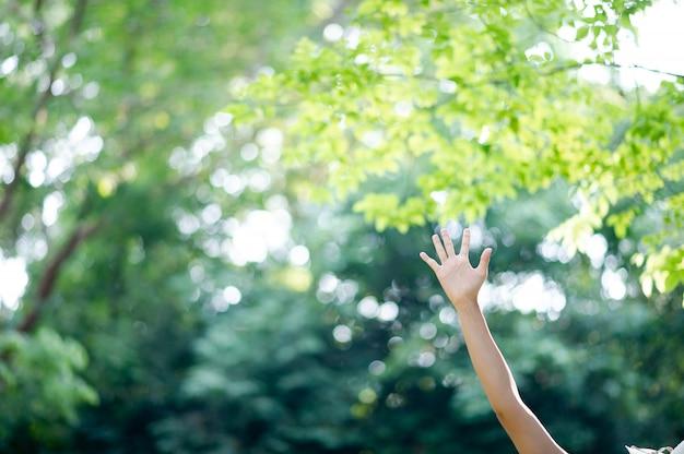 Czyste białe dłonie dziewczyny
