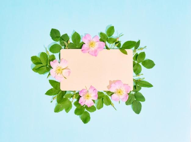 Czysty papier do tekstu z ramą dzikich kwiatów róży na niebieskim tle.