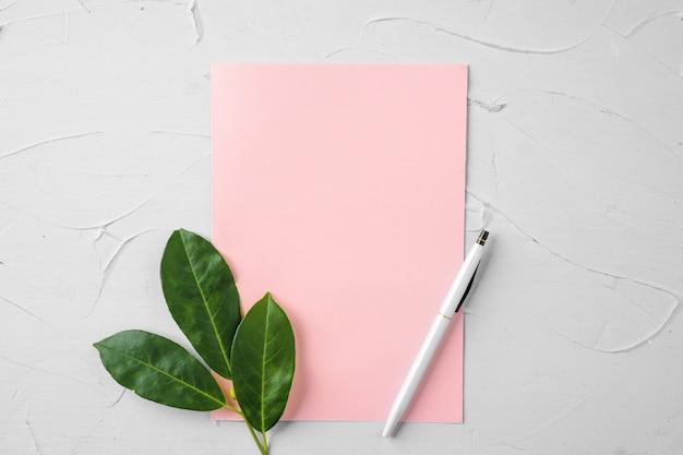 Czysty papier list z gałęzi roślin, miejsce