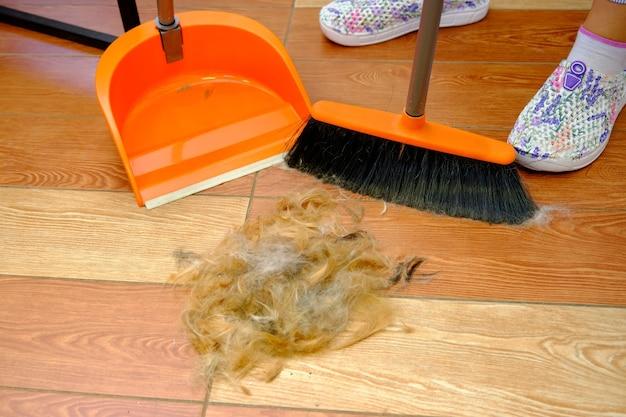 Czyszczenie sierści zwierząt za pomocą szczotki i szufelki do sprzątania pomieszczeń.