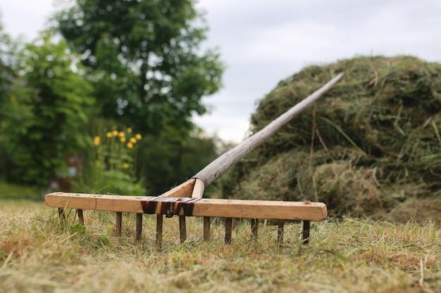 Czyszczenie trawy i liści grabiami na farmie