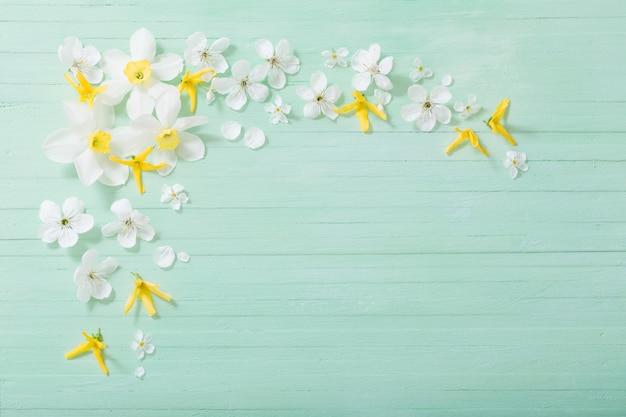 Daffodils i wiśni kwiaty na zielonym drewnianym tle