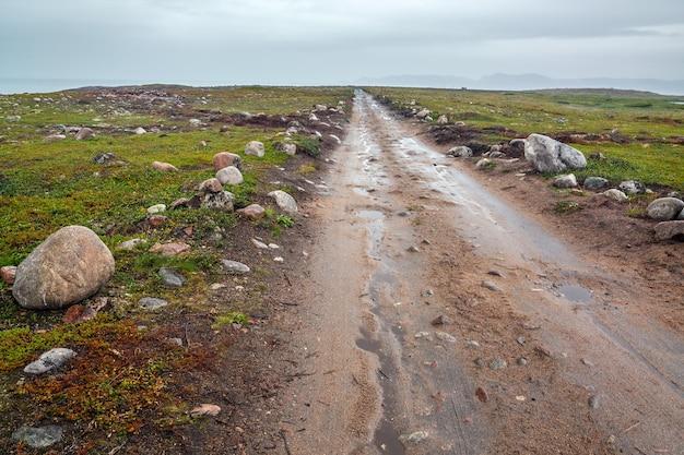Daleko poza arktyczne koło podbiegunowe na półwyspie kolskim. rosja