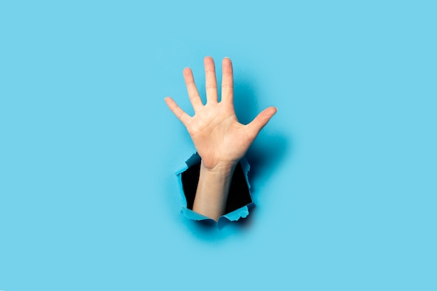 Damska dłoń na niebieskim papierze
