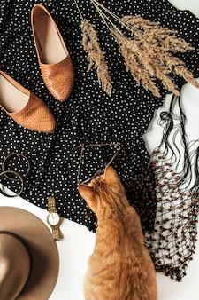Damskie nowoczesne ubrania, akcesoria, uroczy rudy kotek, buty, sukienka w kropki, zegarek, czapka, bransoletka i okulary przeciwsłoneczne