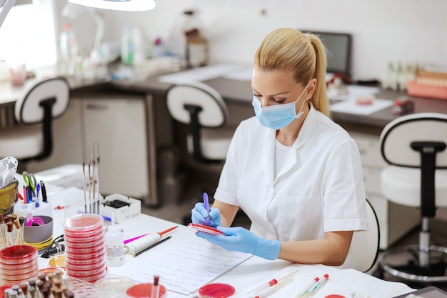 Dedykowany asystent laboratoryjny z maską ochronną i rękawiczkami do zapisywania wyników testów na płytkach petriego.
