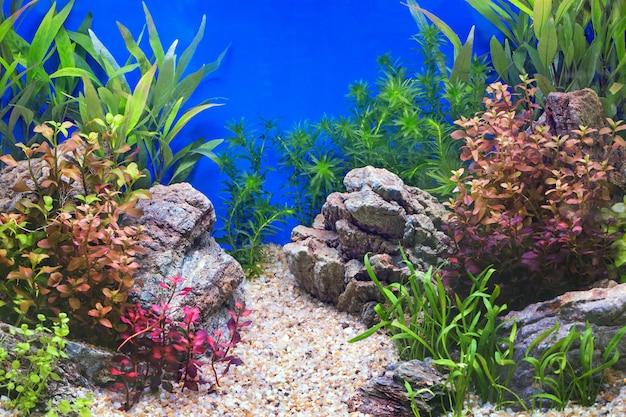 Dekoracja podwodnego krajobrazu w naturalnych szafkach z lustrem.