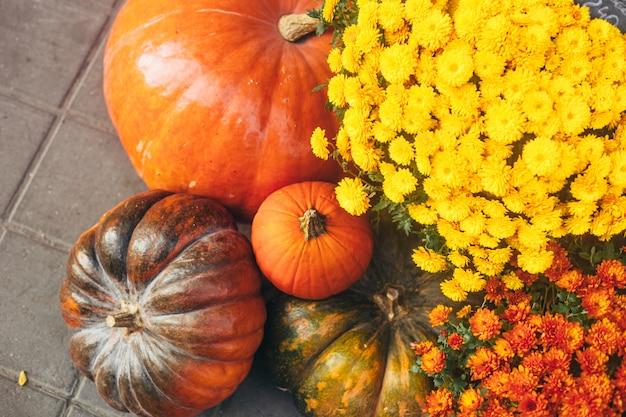 Dekoracje jesienne lub jesienne na zewnątrz z dużymi dyniami i różnymi kwiatami.