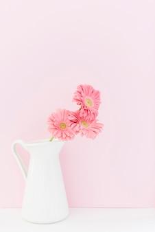 Dekoracyjna kolorowa stokrotka kwitnie w wazie