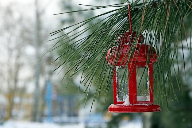 Dekoracyjna latarnia wisząca na gałęzi jodły na scenie zimowej