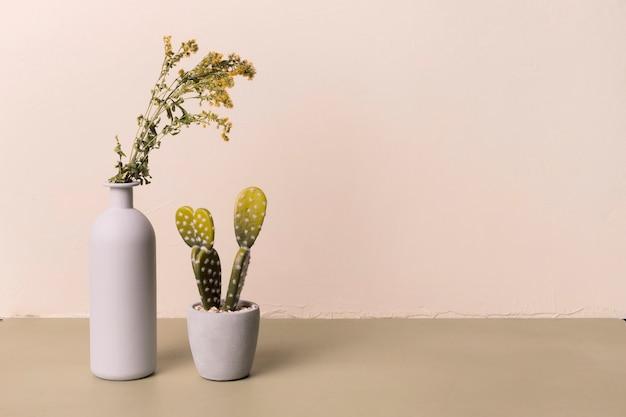 Dekoracyjna roślina w minimalnym wazonie