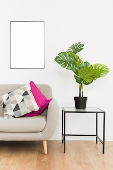 Dekoracyjna roślina z pustą ramą i kanapą