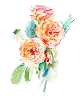 Dekoracyjne kwiaty akwarela. ilustracja kwiatowa, liść i pąki. kompozycja botaniczna na ślub lub kartkę z życzeniami. gałąź kwiatów - róże abstrakcji