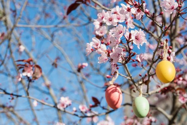 Dekoracyjne pisanki wiszące na gałęzi sakkury z kwitnących kwiat