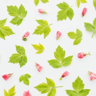 Dekoracyjny kwiatowy wzór