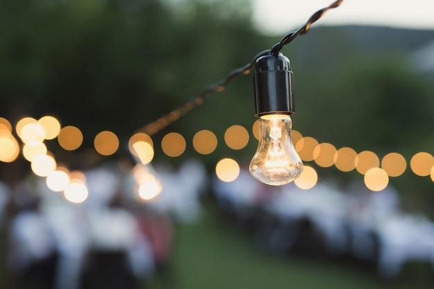 Dekoracyjny plenerowy sznurek zaświeca obwieszenie na drzewie w ogródzie przy nocą