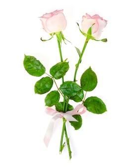 Delikatne jasnoróżowe róże na białym tle.