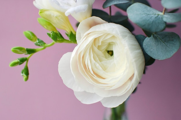 Delikatny bukiet z delikatnego różowego kwiatu jaskier i białej frezji z gałązkami eukaliptusa na różowej powierzchni