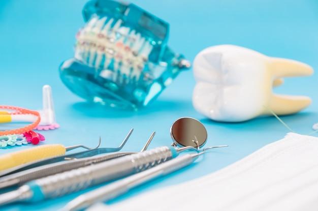 Demonstracyjny model zębów odmian ortodontycznych lub klamrowych