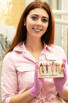 Dentysta demonstruje układ implantów. młody żeński dentysta przy jej miejscem pracy, prezentacja praca. chory ząb, próchnica, zapalenie miazgi.