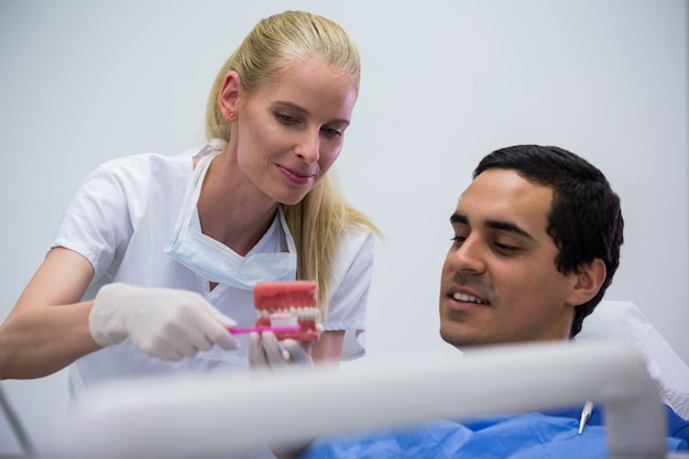 Dentysta pokazuje set wzorcowi zęby pacjent