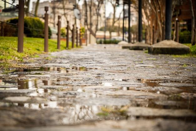 Deptak brukowana ulica mokra od deszczu.