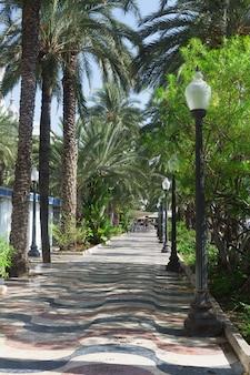 Deptak wzdłuż morza w alicante