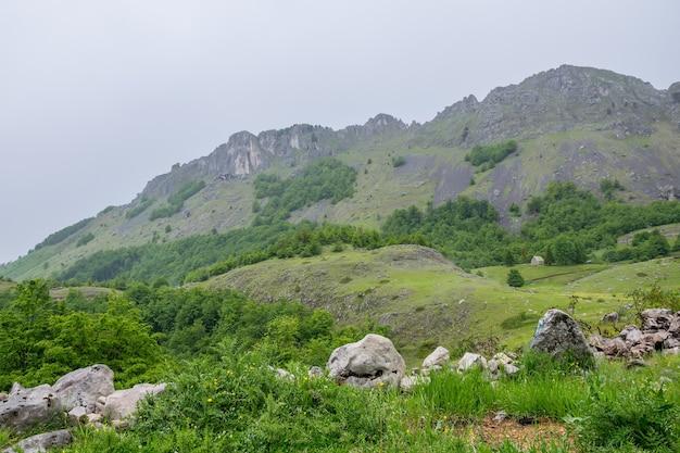 Deszczowe chmury zbliżają się do zielonej górskiej łąki.