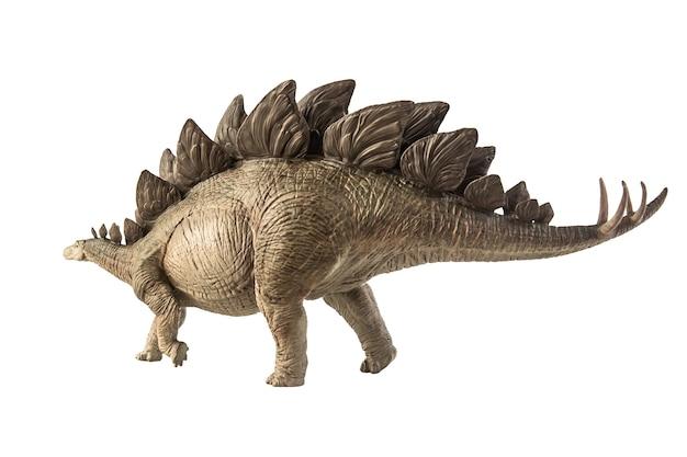 Dinozaur stegozaur na białym tle.
