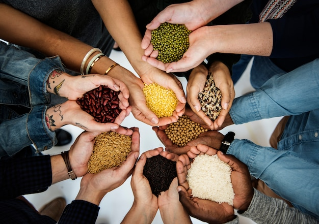 Diverse people hands hold show superfood grains corps