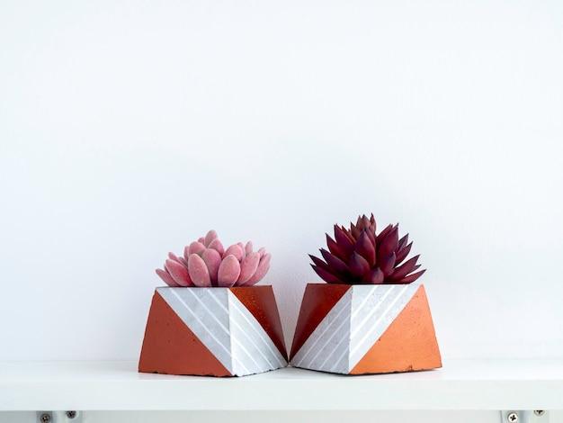 Diy betonowe doniczki, kształt piramidy z różowymi i czerwonymi sukulentami na białej drewnianej półce na białej ścianie z miejscem na kopię. dwie unikatowe donice cementowe pomalowane na kolor miedzi.