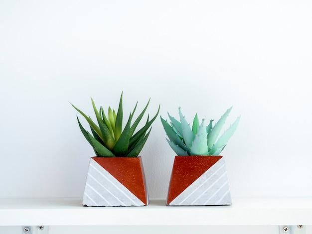 Diy betonowe doniczki, kształt piramidy z zielonymi soczystymi roślinami na białej drewnianej półce na białej ścianie z miejscem na kopię. dwie unikatowe donice cementowe pomalowane na kolor miedzi.