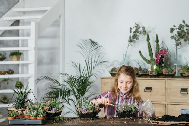 Diy florarium. hobby ogrodnictwa domowego. dziewczyna korzystających z sadzenia i uprawy sukulentów w szklanych wazonach geometrycznych.