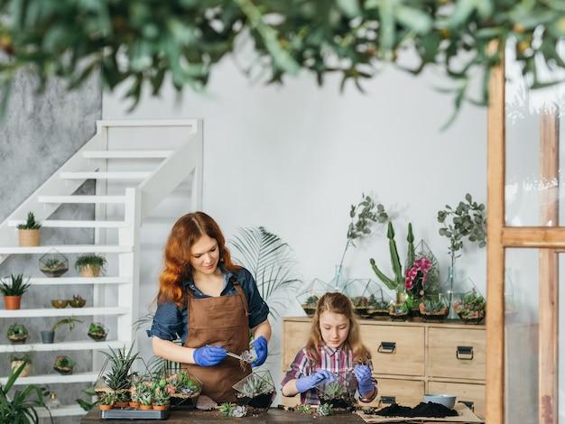 Diy florarium. kreatywne rodzinne hobby i wypoczynek. matka i córka pracują z sukulentami w ich krytym ogrodzie.