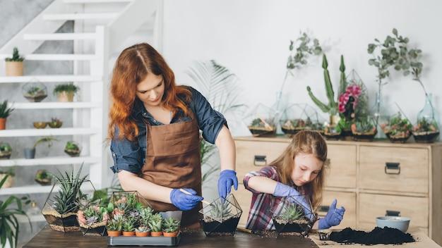 Diy florarium. kreatywne rodzinne hobby i wypoczynek. matka i córka sadzą sukulenty w szklanych wazonach o geometrycznym kształcie.